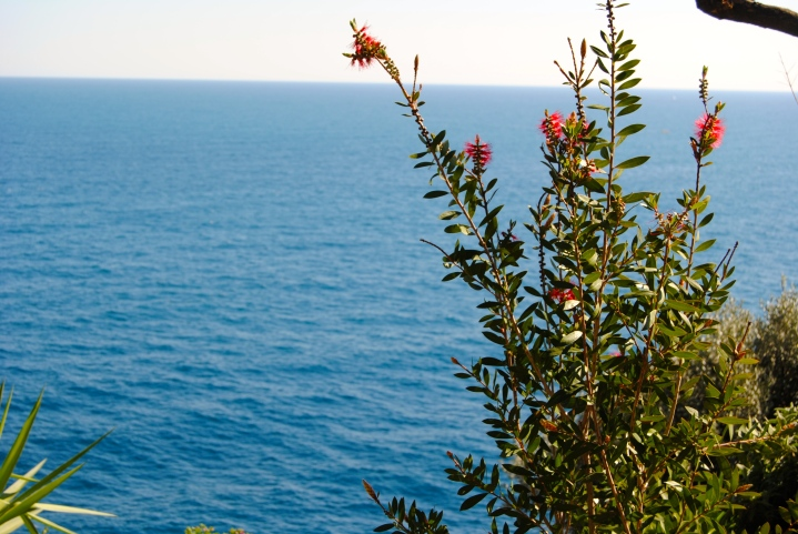 View of the sea from the gardens.